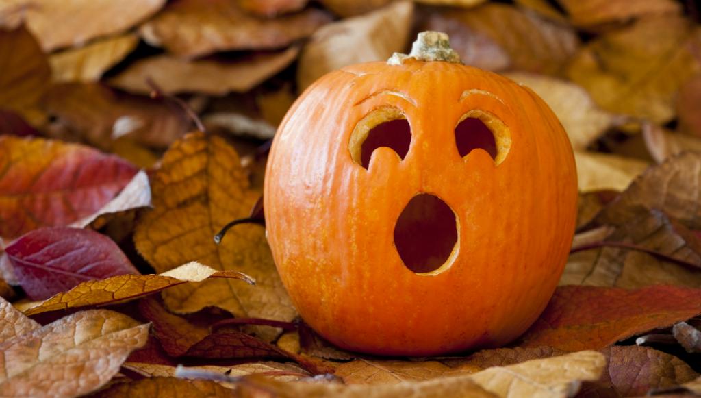 Surprised-Pumpkin-Pumpkin-Spice-Taste-Test
